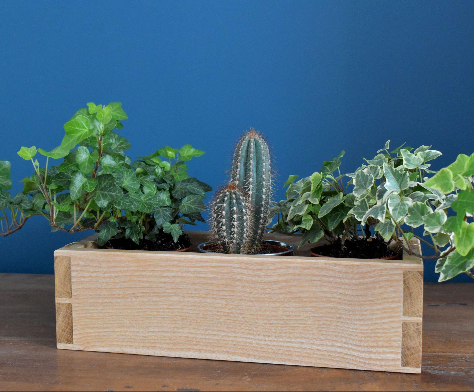 Oak and ash three-pot planter