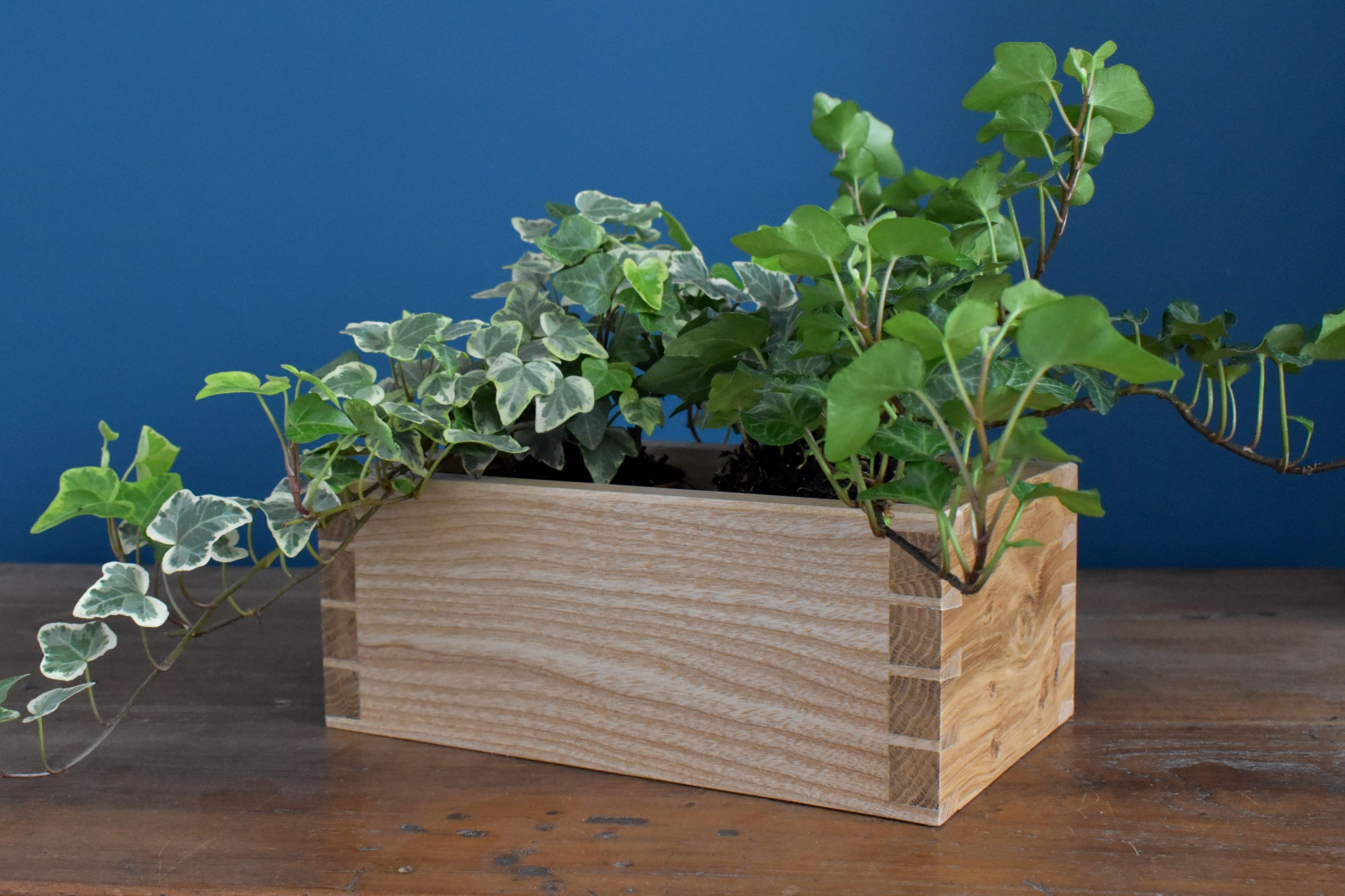 Pippy oak and ash two-pot planter