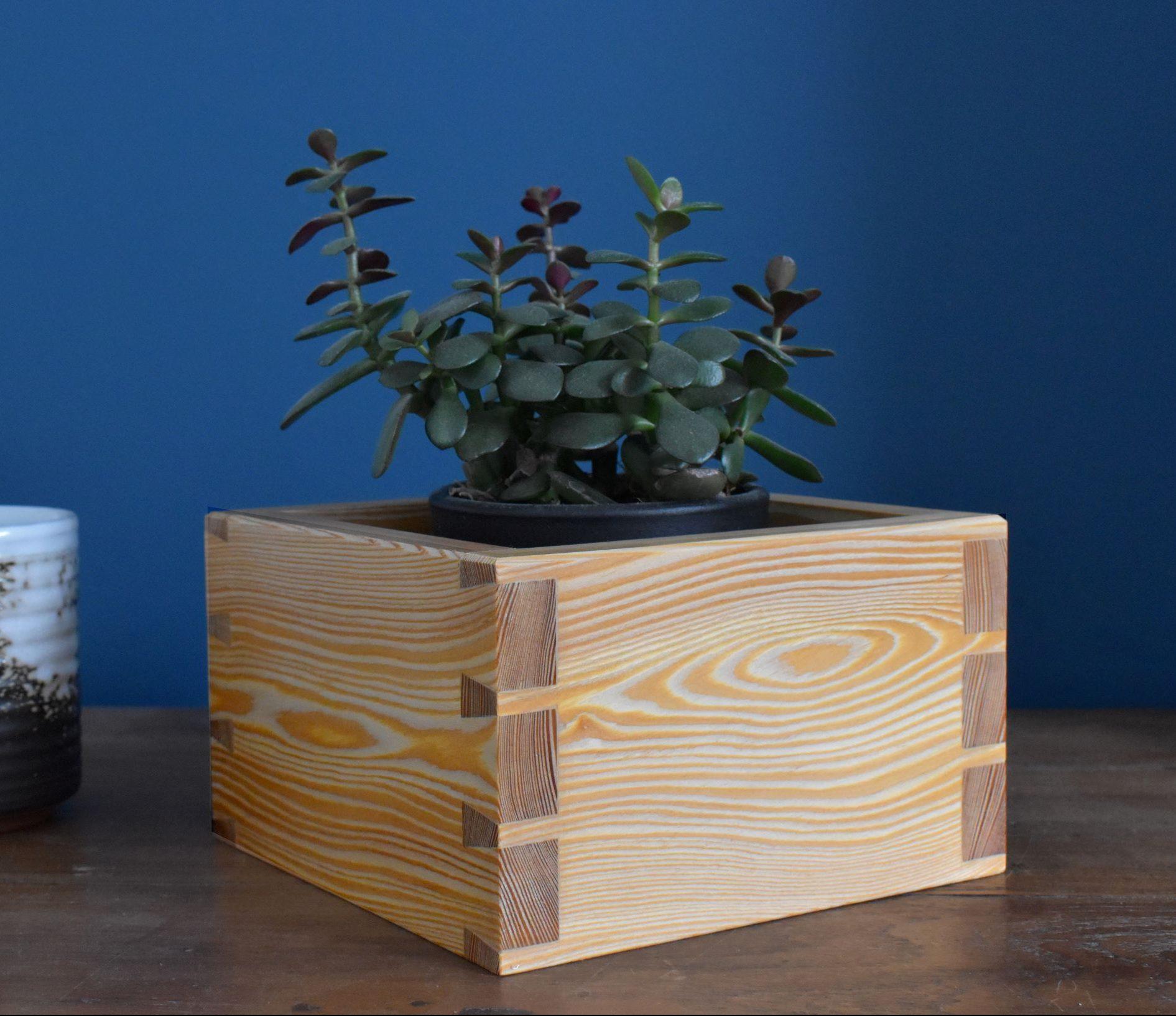 Larch plant pot (3 dovetails)